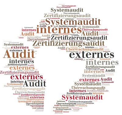 internes Audit