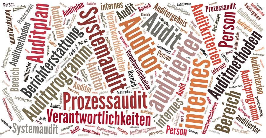 Warum führen Sie ein internes Audit durch? | Blog der Lösungsfabrik